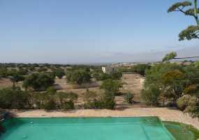 Villa en Vente avec  Arbres